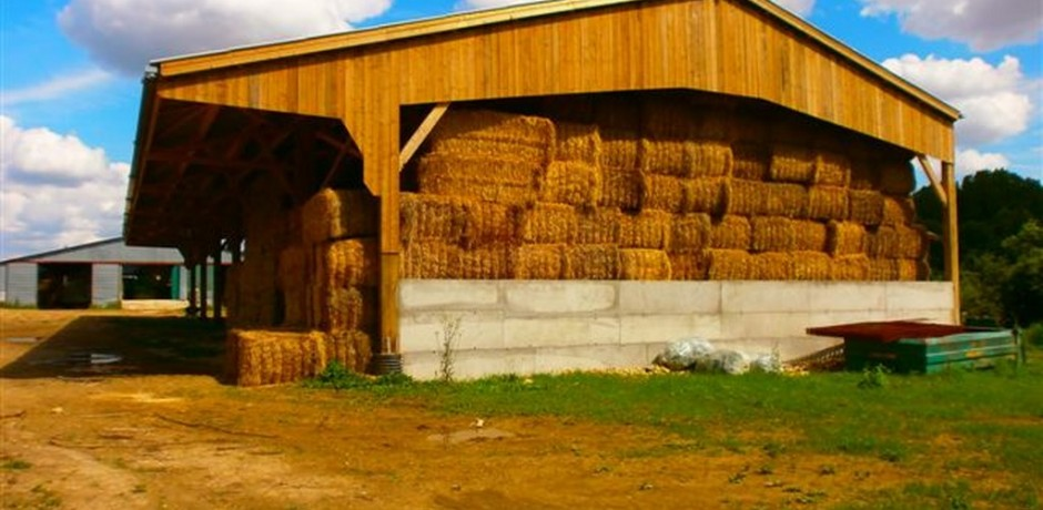 grand batiment de stockage de grains